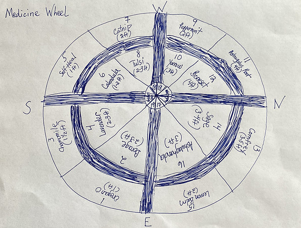 what's in a medicine wheel